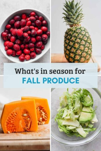 Cover photo for fall product guide