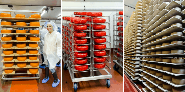 Inside the Roth Cheese Creamery