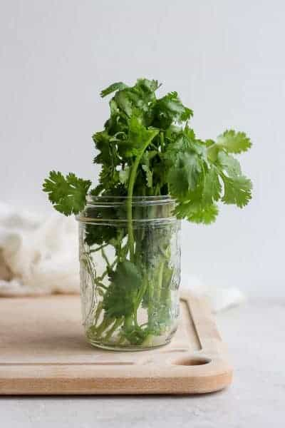 glass jar with cilantro in it
