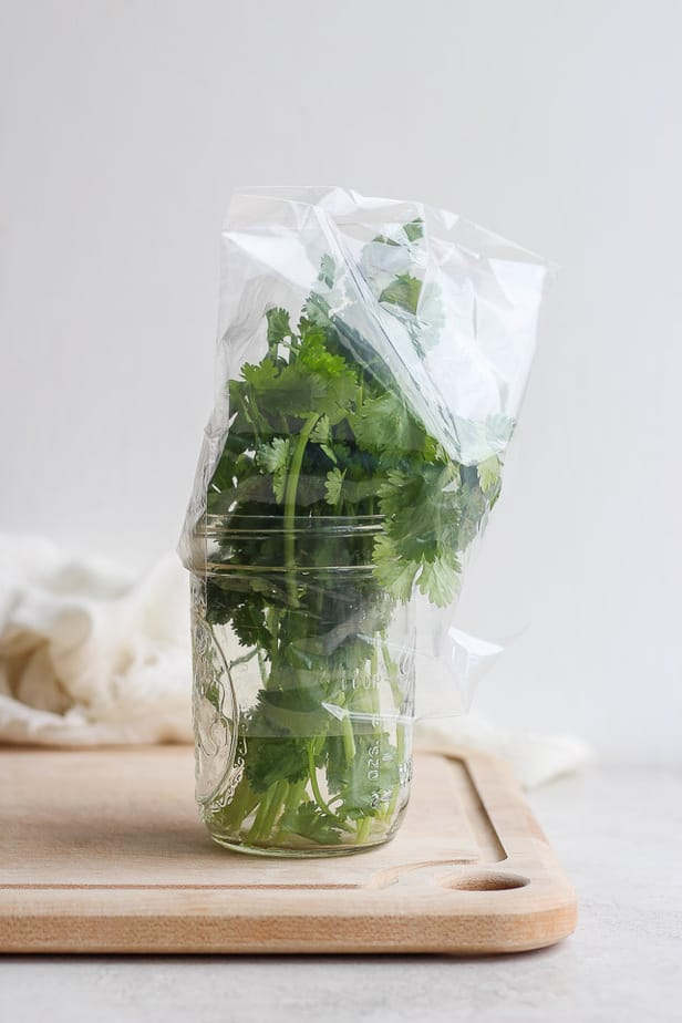 cilantro in a jar wrapped in plastic wrap