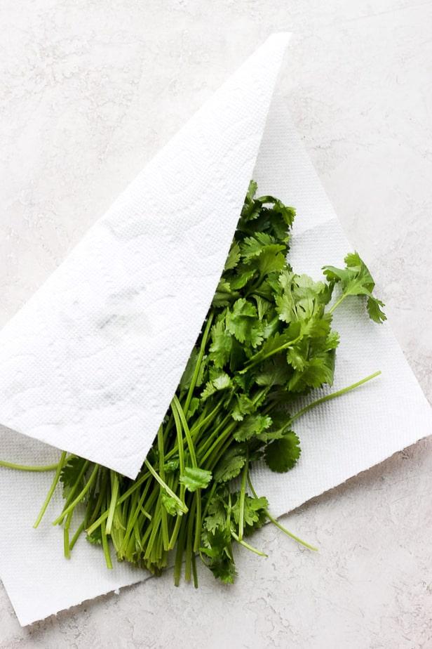 cilantro in a paper towel