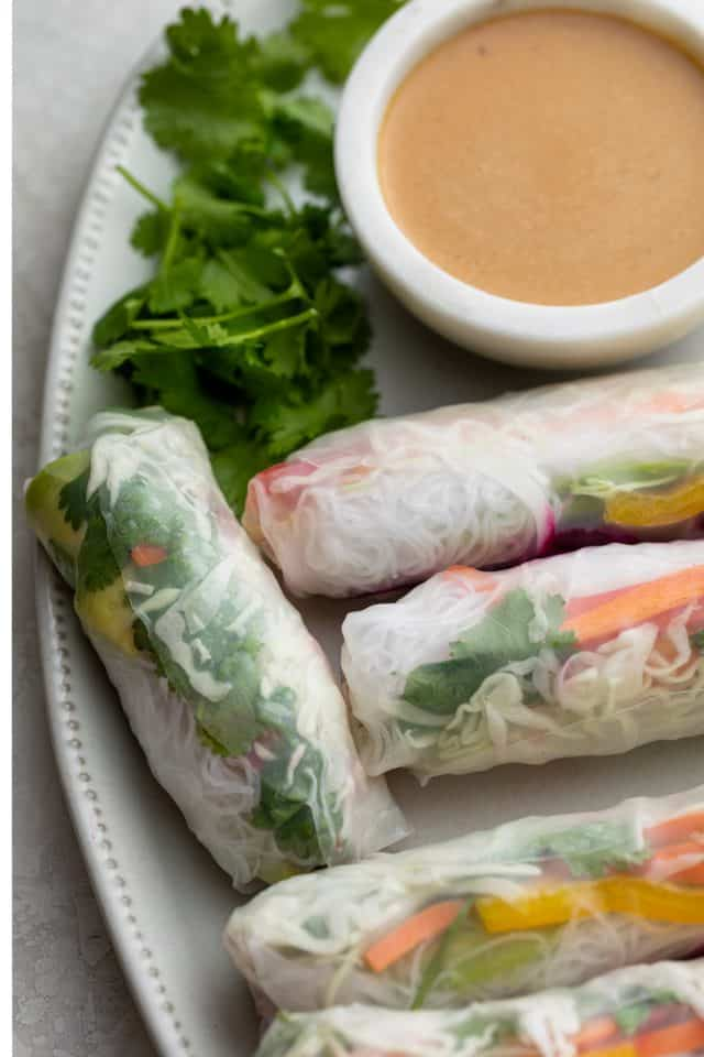Close up shot of the vegetable spring rolls on plate with cilantro
