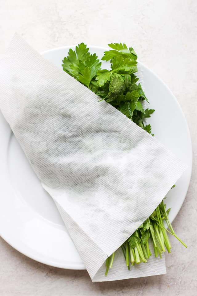 Washed parsley on a plate covered with paper towel