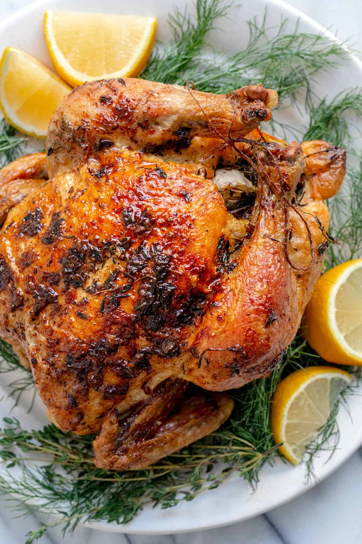 Roasted whole young chicken on white plate with herbs and lemon wedges