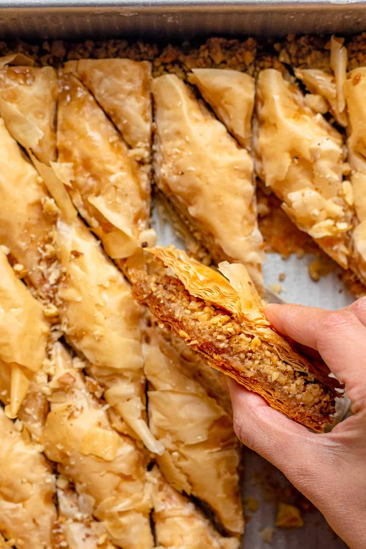 Hand holding a piece of lebanese baklawa to show the inside of the piece