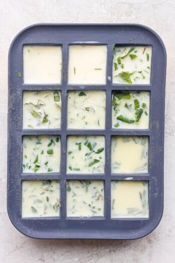 Frozen fresh herbs in ice cube tray